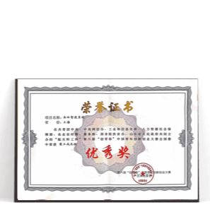 """团中央""""创青春""""优秀奖"""